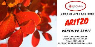 AVVISO PUBBLICO CORTES APERTAS ARITZO IN BARBAGIGIA ANNUALITA 2018